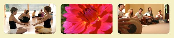banner_asana_flower_kirtan