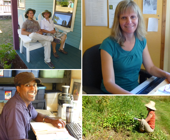 [clockwise from top left] Uddhava and Joe sitting in one of the chairs they just painted; Paramita hard at work; Lisa battling the morning glory; Kali in the kitchen office