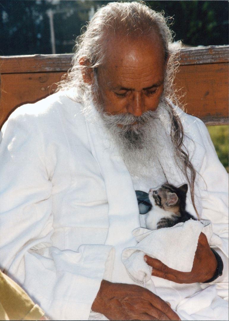Babaji with kitten