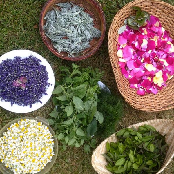 floral harvest