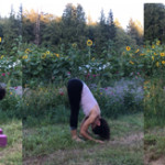 Asana of the Month: Ardha Surya Namaskar – Half Sun Salutation